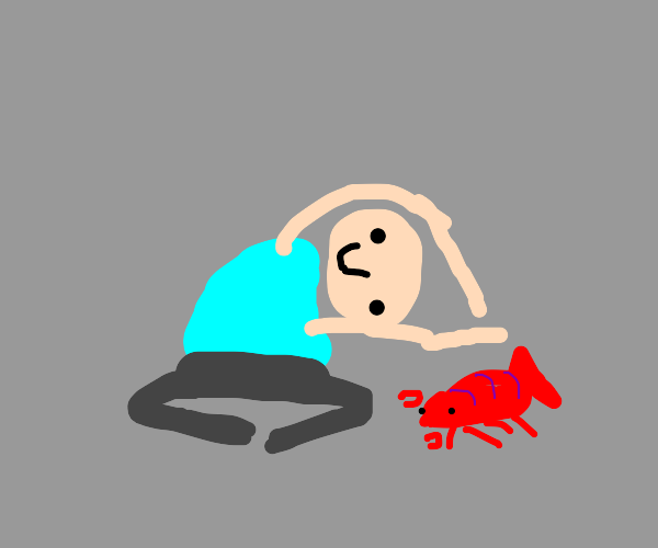 Bring a lobster to yoga class