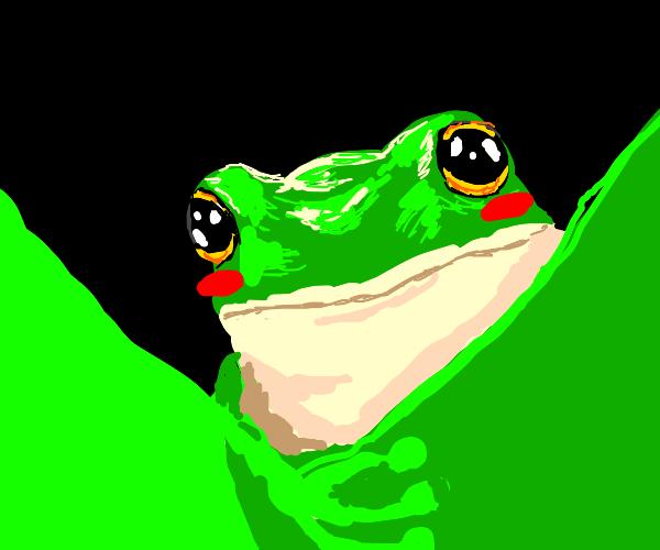 Draw a cute frog (: