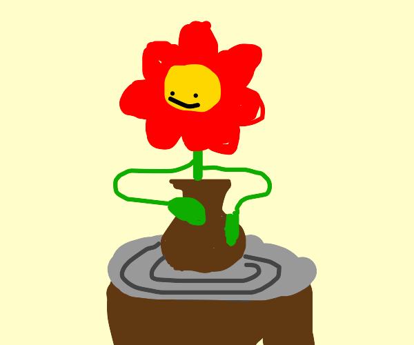 flower make vase on potter's wheel