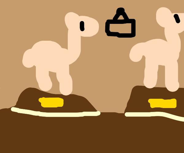 Llama/Alcapa museum