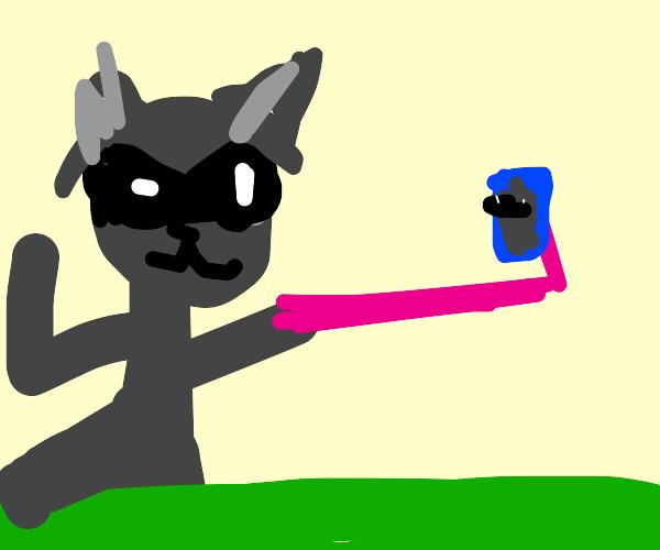raccoon uses iphone on tripod to take selfie