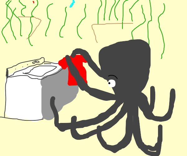 Octopus on laundry day