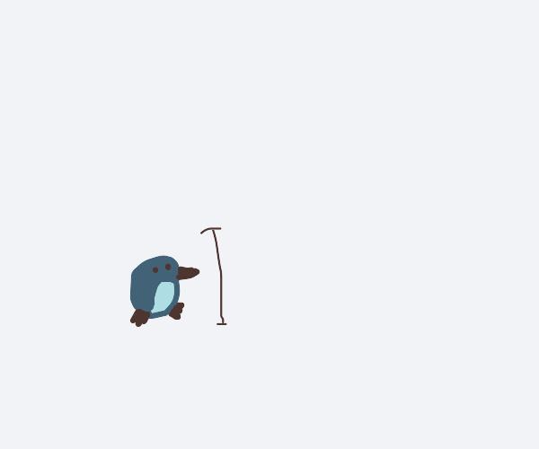 A smol penguin