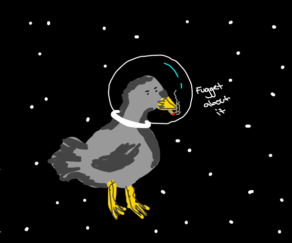 Pigeon in Space