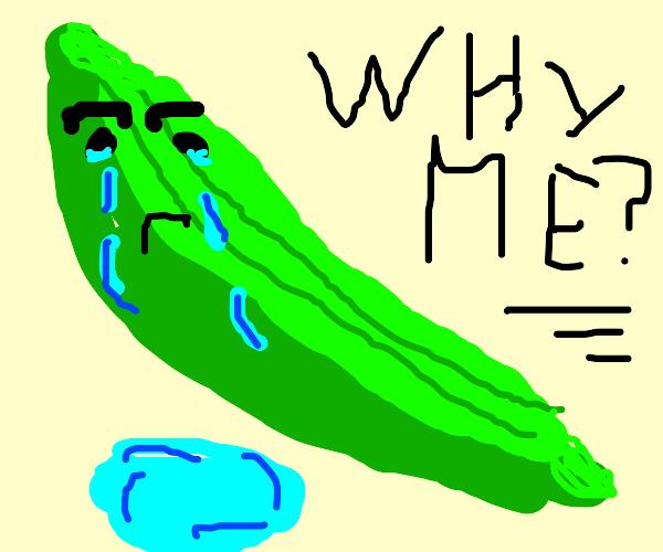 Sad Cucumber
