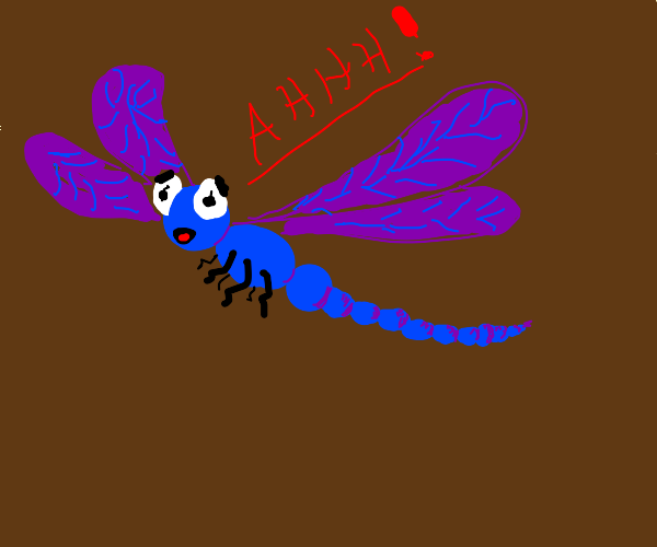 Screaming blue and purple dragonfly