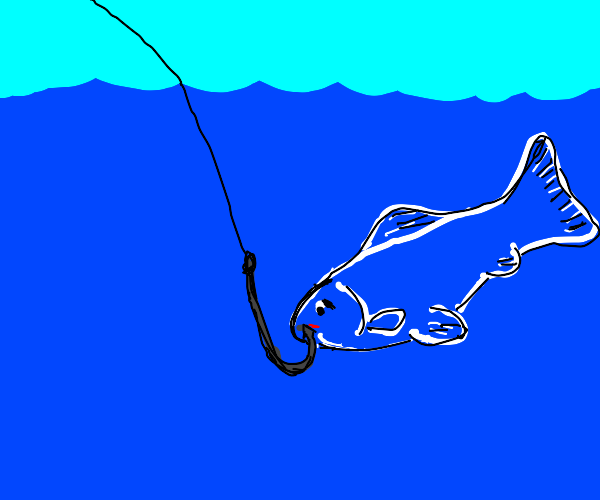 Fish caught by hook