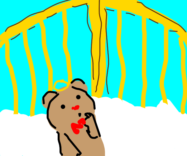 Teddybear goes to heaven
