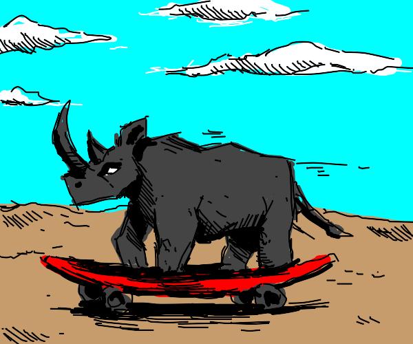 Rhino rides on Skateboard
