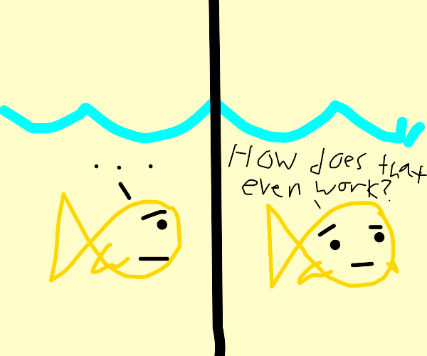 Fish can't breathe underwater