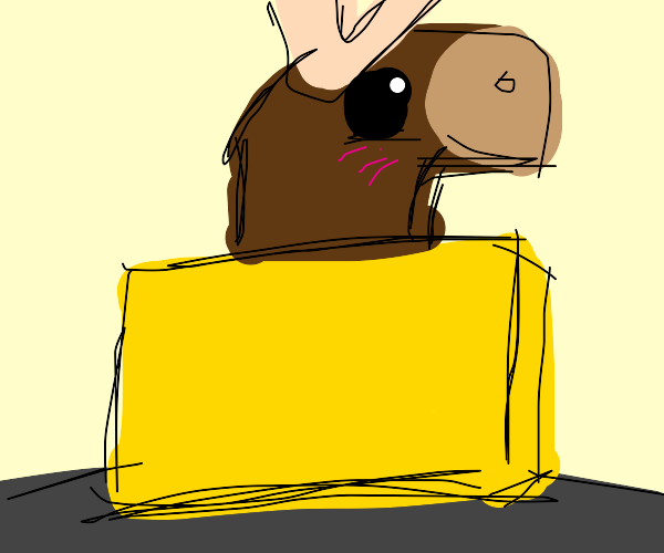 Moose in a Box