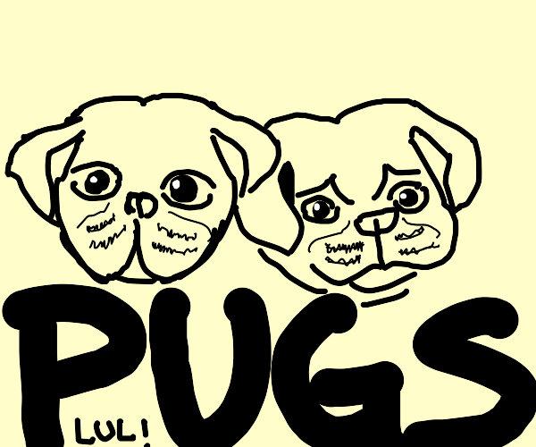 Two pups on top of some words