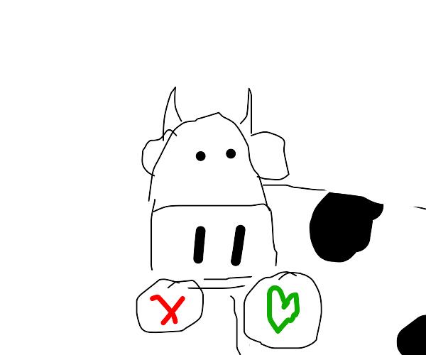 Cow Tinder