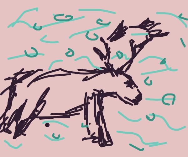 A Drowning Reindeer