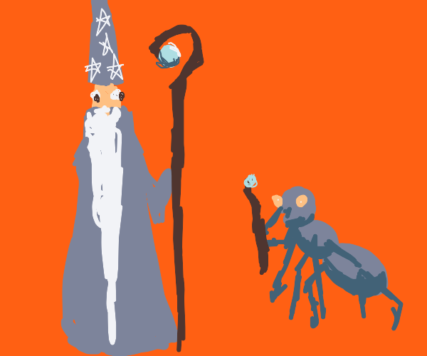 ant assists a wizard