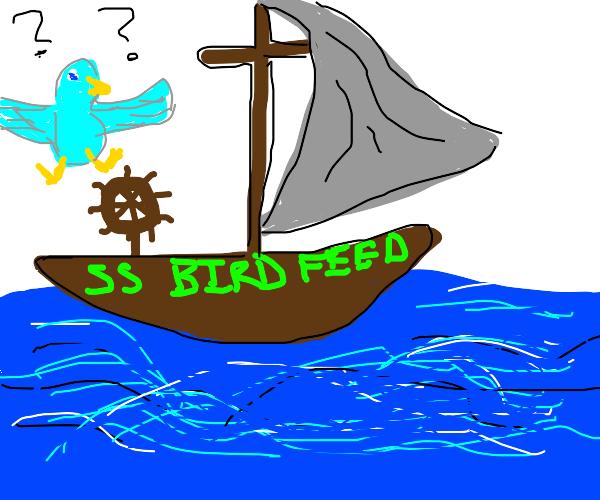 bird feeds lost at sea man