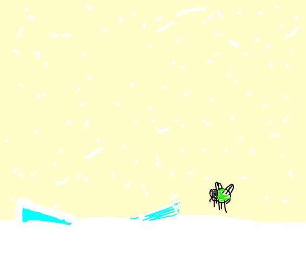 Firefly in a Snowstorm