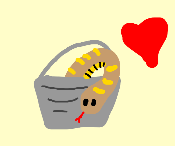 Cute loving snake in a bucket