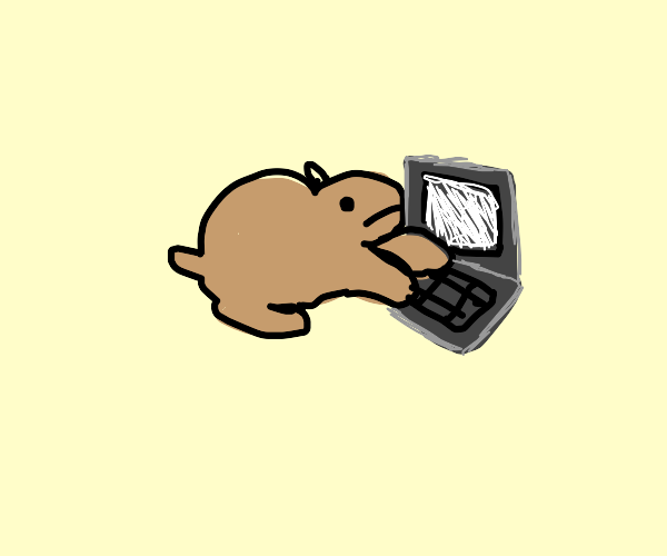 Capybara Programming