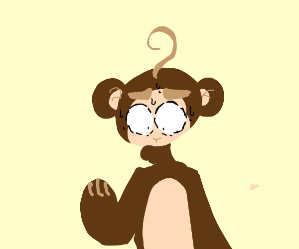 monkey has existential crisis