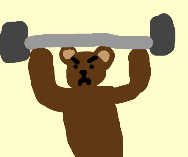 Extreme Bear