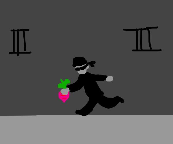 Beet robber