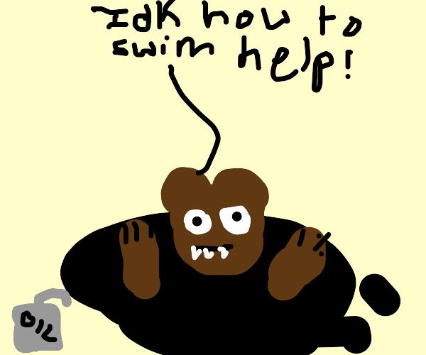 bear drowning in oil