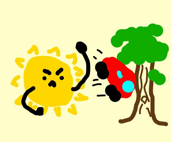 The sun throws a car at a tree