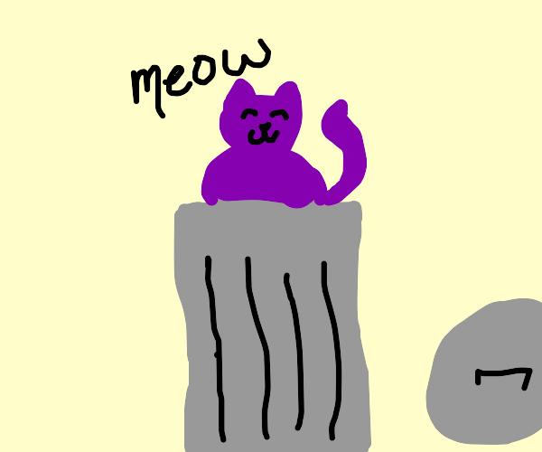 Purple Cat In a Trash Can