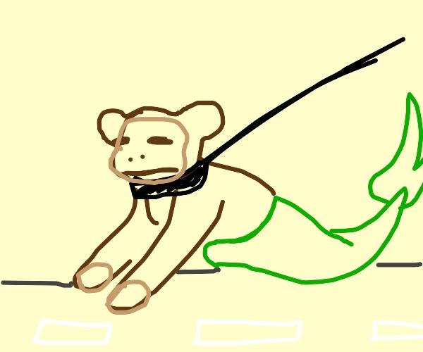 pet mermaid on a leash