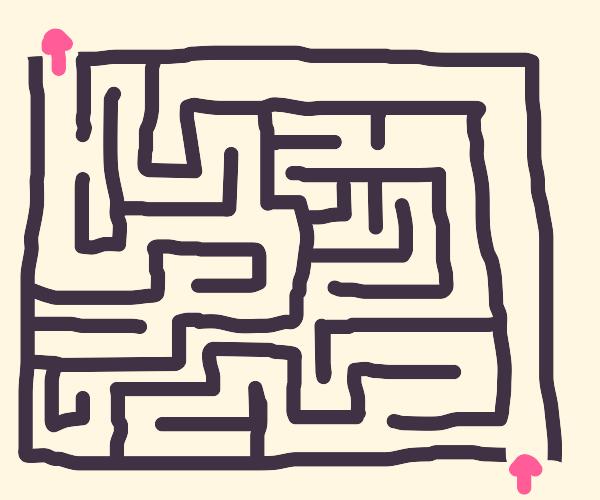 Glass door maze