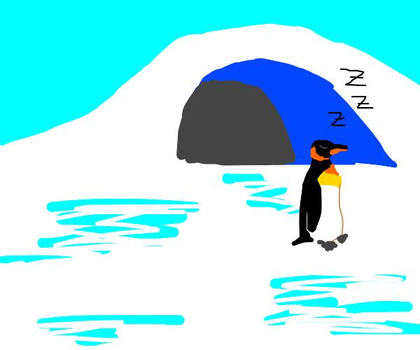 sleepy penguin cave