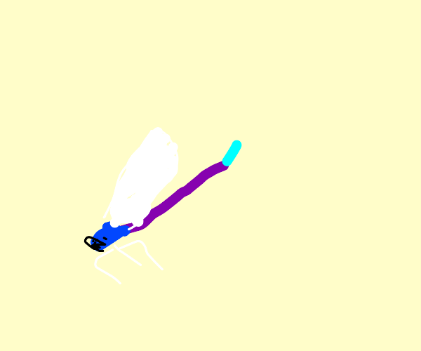 Simple Damselfly