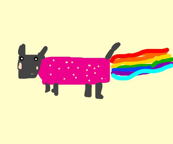 Nyan Cat nyanning