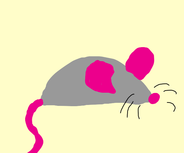 Mouse without a face