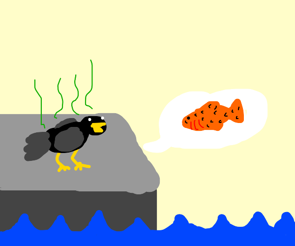Smelly bird asks about fish