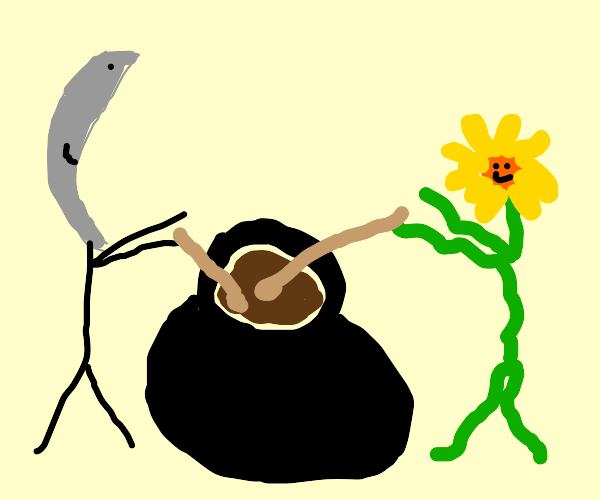 moon and plant making stew