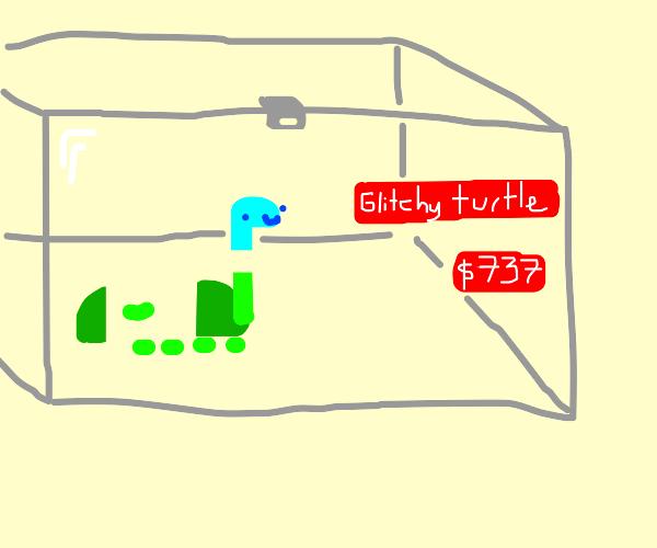tury! the glitchy turtle! $737