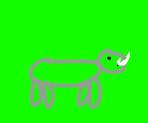 rhino on green screen
