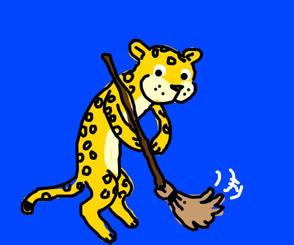 A cheetah doing chores