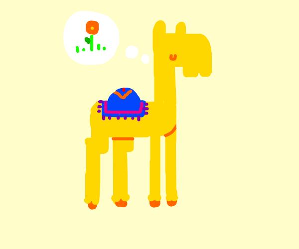 Camel imagining a Flower