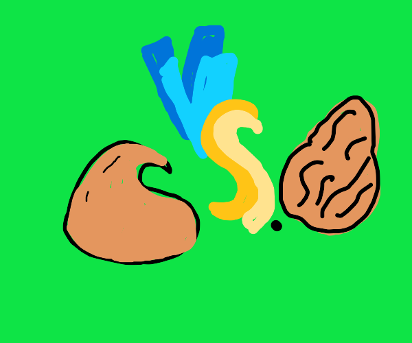 chocolate chips vs rasins!