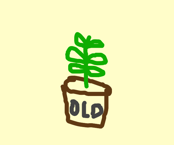 Antique Plant