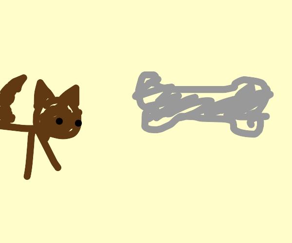 Give a dog a bone!