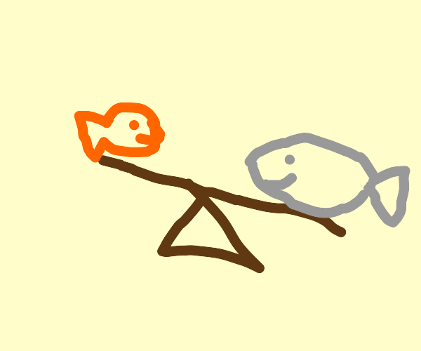 Salmon & Goldfish on a see saw