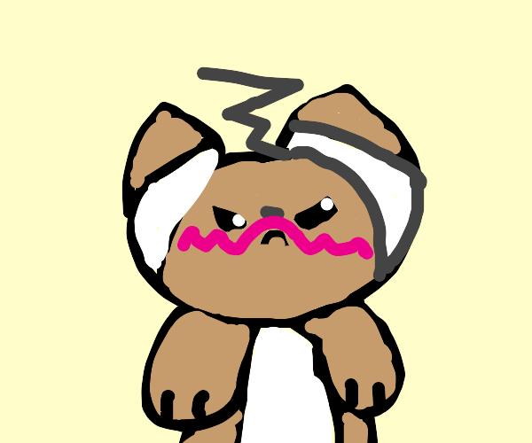 Angry Ferret