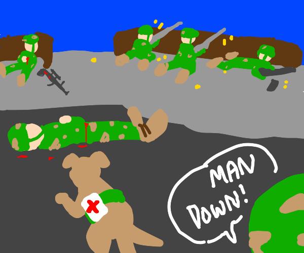 Dog medic