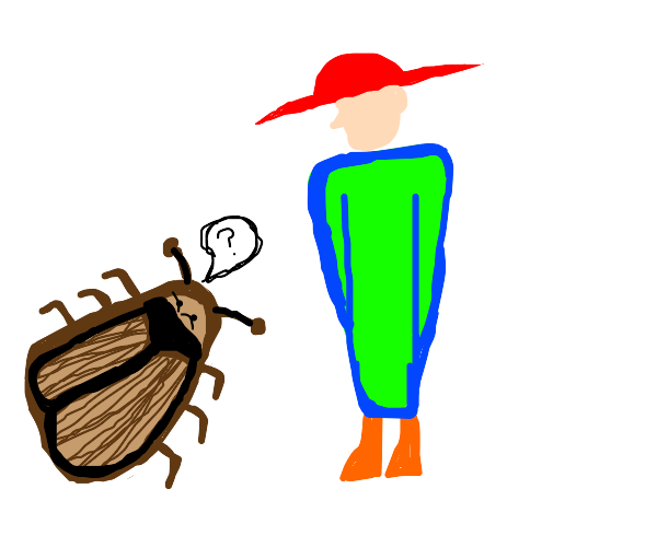 Cockroach confused by fashion