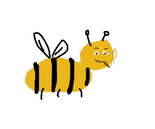 Stoner bee