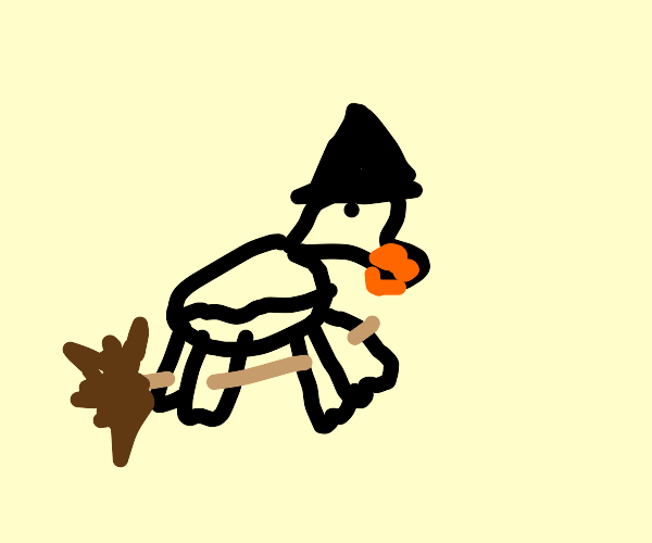 Witch duck